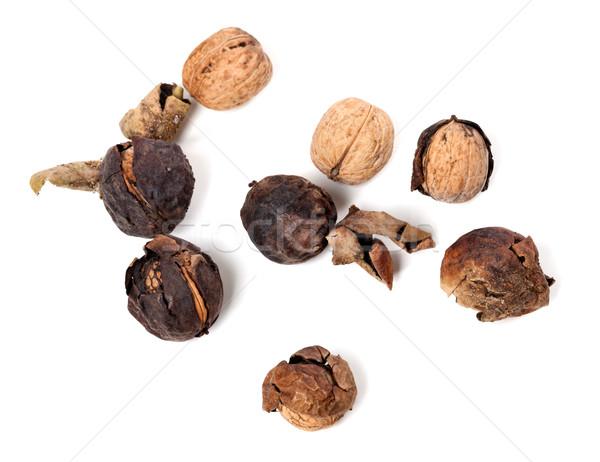 Crude walnuts Stock photo © BSANI