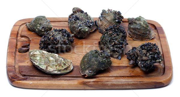 Veined rapa whelk and oyster on wooden kitchen board Stock photo © BSANI