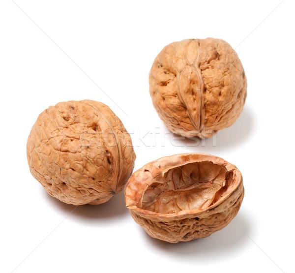 Ripe walnuts on white Stock photo © BSANI