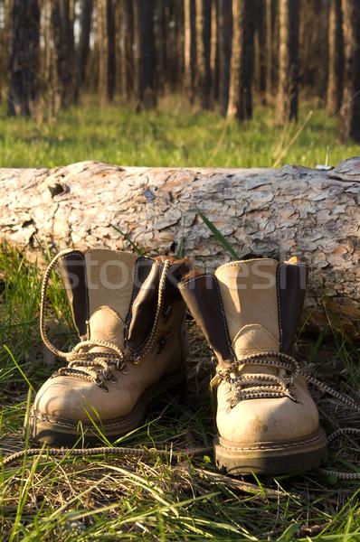 Stockfoto: Wandelen · laarzen · pine · hout · boom · bos