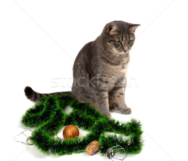 Gray cat sitting with Christmas tinsel, Christmas-tree ball and  Stock photo © BSANI
