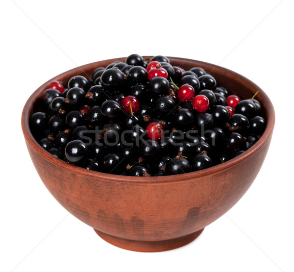 Blackcurrants with redcurrants in ceramic bowl Stock photo © BSANI