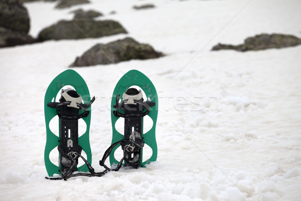 Snowshoes in snowy mountains Stock photo © BSANI