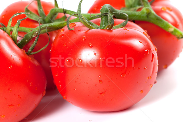Ripe tomato with water drops on white background Stock photo © BSANI