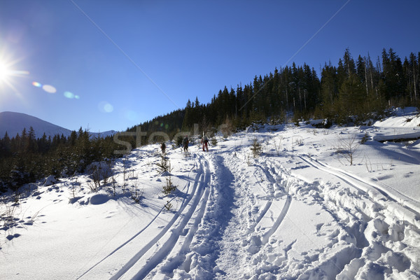 Freeriders with skis go on footpath in snow at sun winter day Stock photo © BSANI