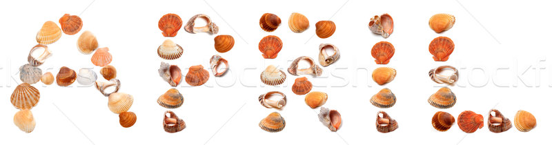 A P R I L text composed of seashells Stock photo © BSANI