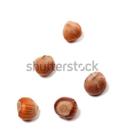 Brown hazelnuts on white Stock photo © BSANI