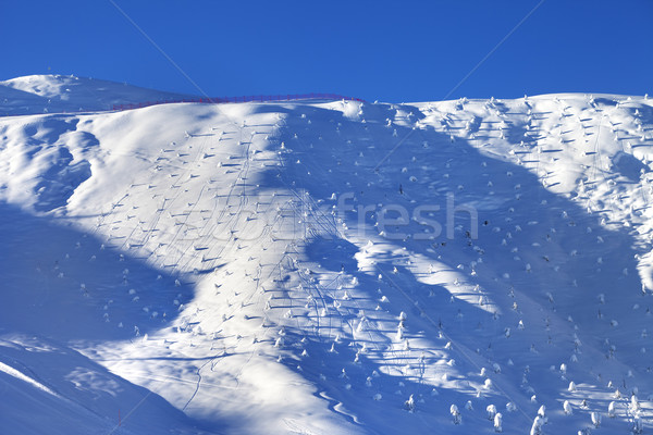 Off-piste slope with little fir after snowfall at early morning Stock photo © BSANI