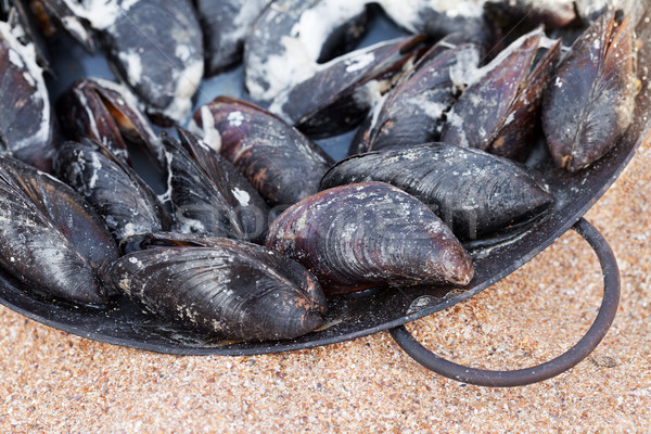 Freshly cooked mussels in metal tray on sand beach  Stock photo © BSANI