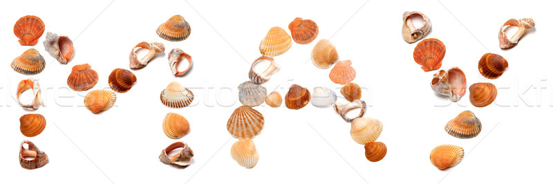 M A Y text composed of seashells Stock photo © BSANI