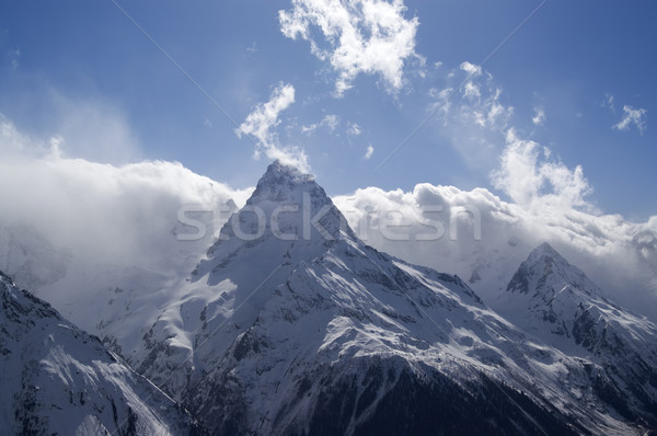 Cloudy Mountains. Caucasus Mountains, Dombay. Stock photo © BSANI