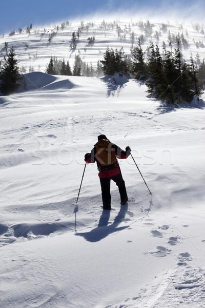 Stockfoto: Wandelaar · winter · bergen · zonnige · winderig · dag
