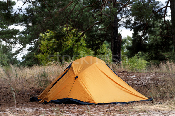 Orange tent in forest Stock photo © BSANI
