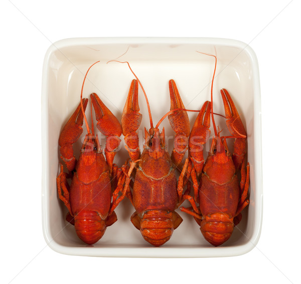 Three boiled crawfish in ceramic dish Stock photo © BSANI