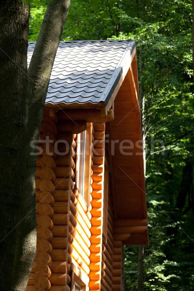Yaz kulübe orman ahşap doğa Stok fotoğraf © BSANI