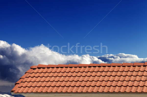 Roof tiles and blue sky in nice sunny day Stock photo © BSANI