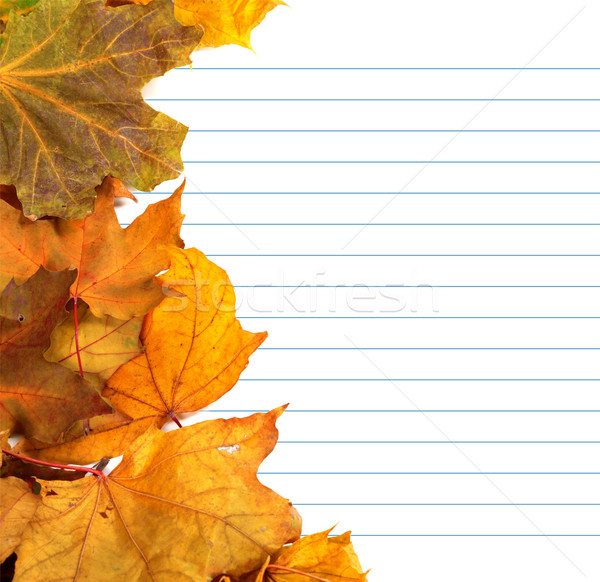 Autumn maple-leafs and notebook paper Stock photo © BSANI
