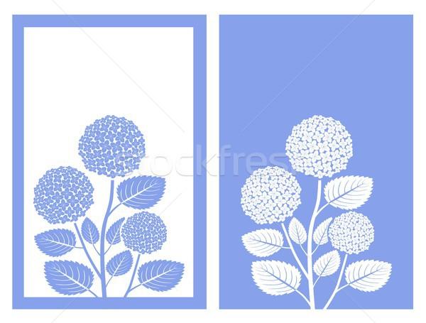 Blu vettore isolato fiore design verde Foto d'archivio © bspsupanut