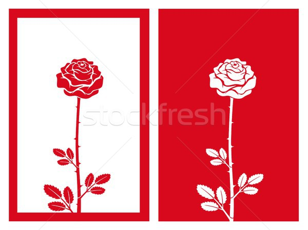 red rose vector Stock photo © bspsupanut