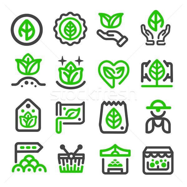 Zöld piac vékony vonal ikon vásárlás Stock fotó © bspsupanut