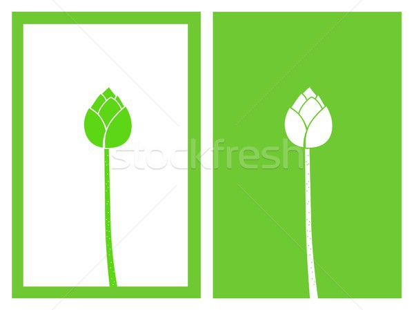 green lotus bud vector Stock photo © bspsupanut