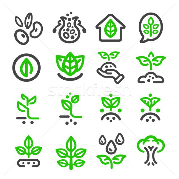 plant thin line icon Stock photo © bspsupanut