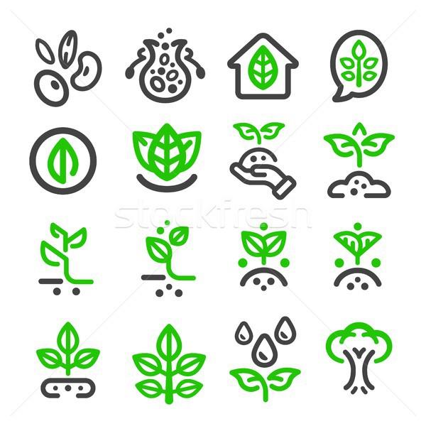 Stock photo: plant thin line icon