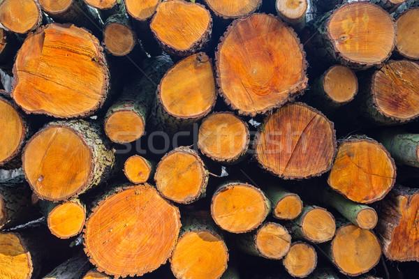 Stock fotó: Fa · háttér · száraz · aprított · tűzifa · egymásra · pakolva