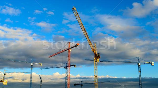 Construction cranes Stock photo © bubutu