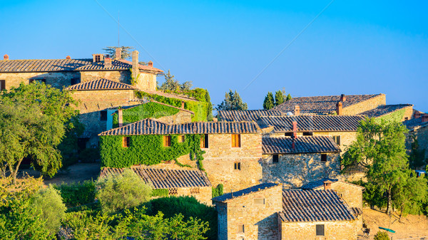 Small Italian village with ancient bricked house with terracotta Stock photo © bubutu