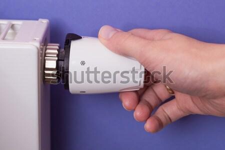 Radiateur thermostat main pourpre chambre Photo stock © bubutu