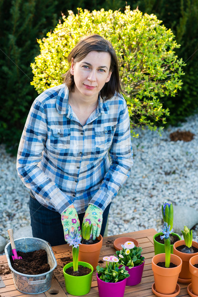Woman planting flower bulbs - looking at camera Stock photo © bubutu