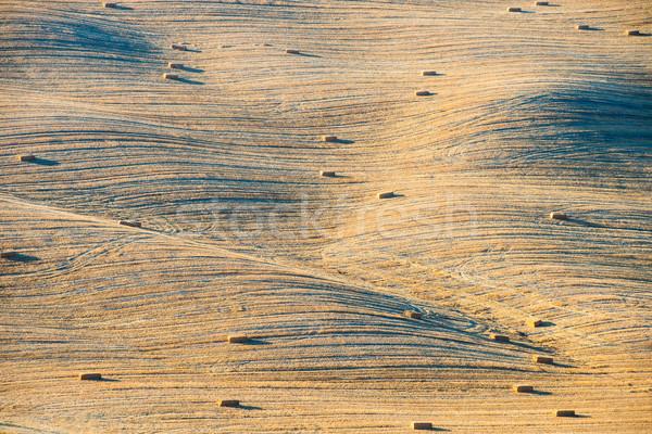 tuscany landscape, Crete Senesi hills, Italy Stock photo © bubutu