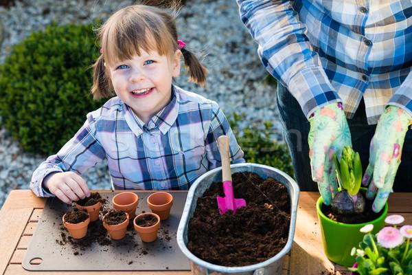 Girl planting flower bulbs Stock photo © bubutu