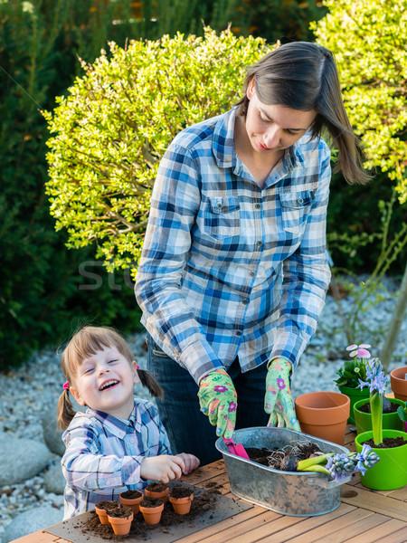 Menina flor mãe criança jardinagem Foto stock © bubutu