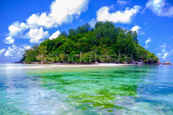 Paradijs Seychellen eiland zee dek Stockfoto © bubutu