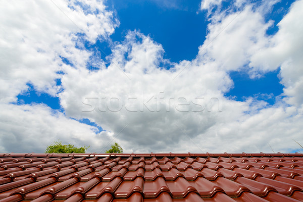 Close-up of glazed brown roof tiles  Stock photo © bubutu