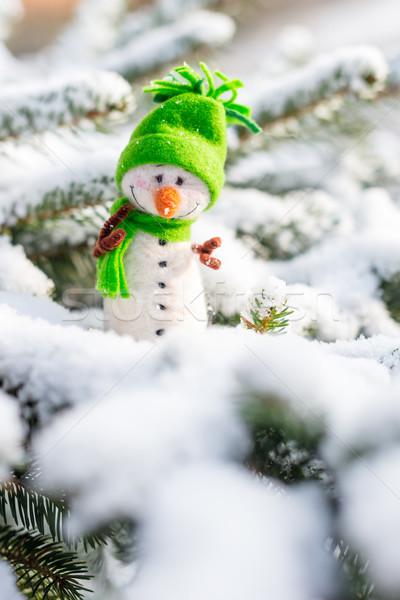 Felice pupazzo di neve neve inverno Natale sorridere Foto d'archivio © bubutu