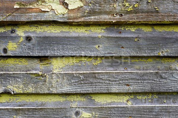 Stock photo: Old cracked painted wood