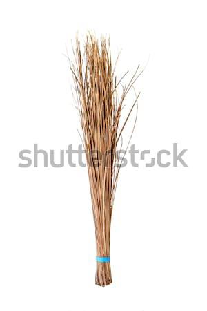 Bezem kokosnoot product hout home Stockfoto © Bunwit