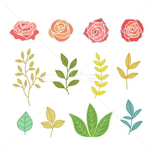 Hand Drawn Botany Set Of Flowers And Leaves Stock photo © burtsevserge