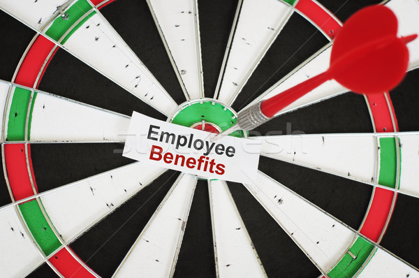 Employee Benefits concept Stock photo © burtsevserge