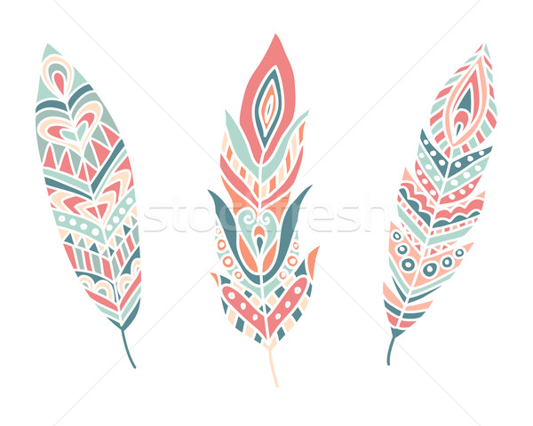 Ethnic Feathers. Hand Drawn Design Elements Stock photo © burtsevserge