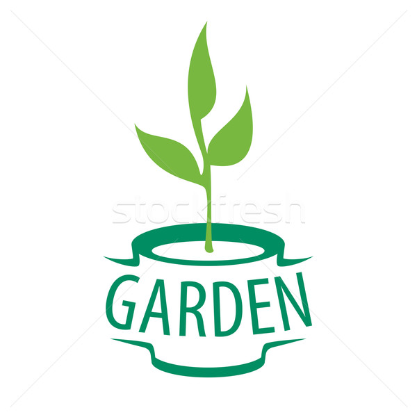 vector logo sapling in a pot for the garden Stock photo © butenkow