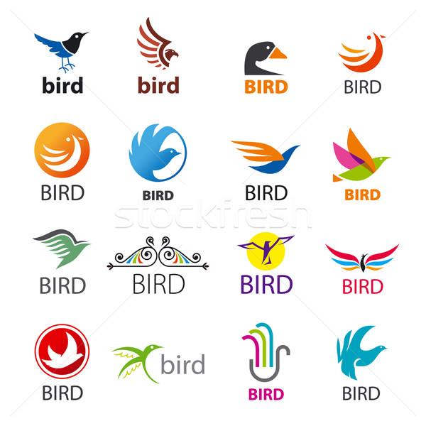 Grande conjunto vetor logos aves negócio Foto stock © butenkow