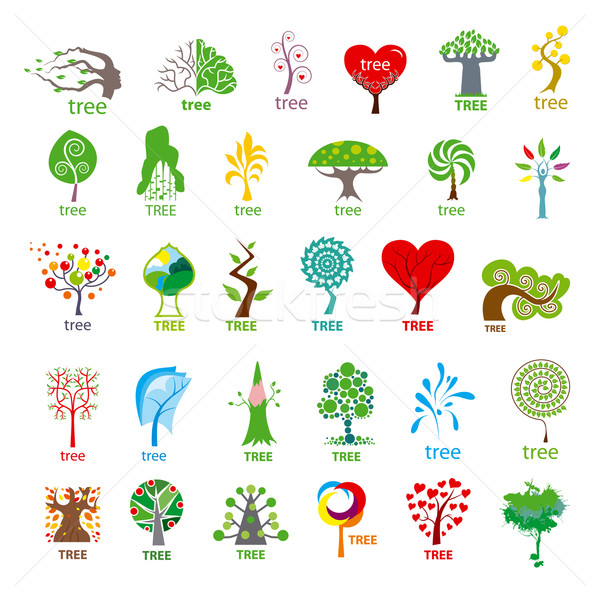 biggest collection of vector logos stylized tree  Stock photo © butenkow