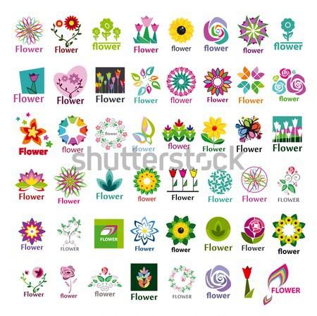 Red logo flor vidrio signo web Foto stock © butenkow