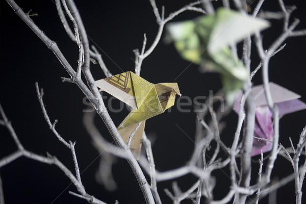 Origami vogel bankbiljetten vergadering business Stockfoto © butenkow
