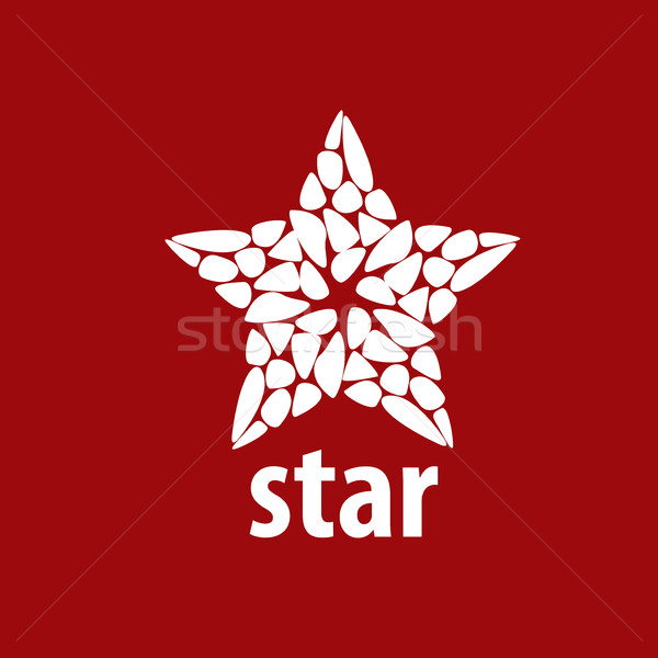 вектора логотип звездой аннотация знак брендинг Сток-фото © butenkow