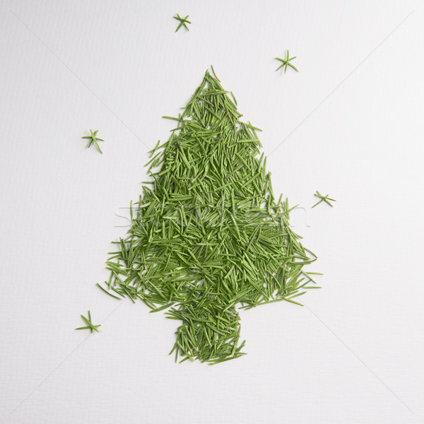 Green tree of the needles Stock photo © butenkow